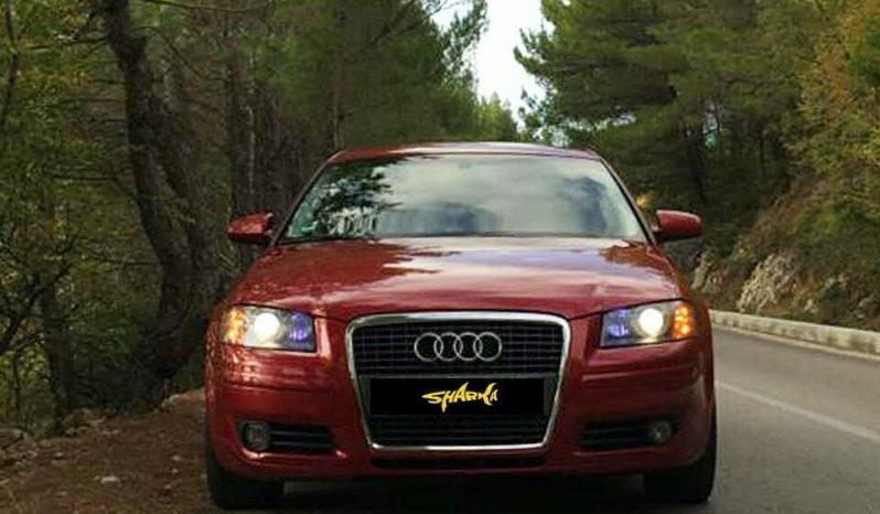 Audi A3 2007 Manuale Nafte 2.0 full